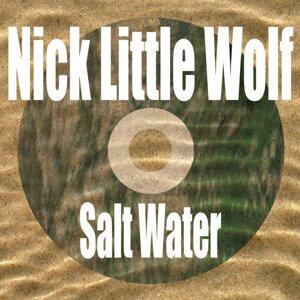 Nick Little Wolf 歌手頭像