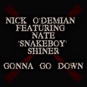Nick O'Demian 歌手頭像
