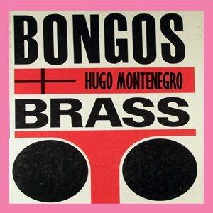 Hugo Montenegro (雨果蒙特奈果) 歌手頭像
