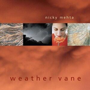 Nicky Mehta 歌手頭像