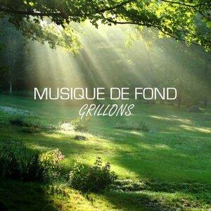 Musique de Fond Ecole Nature 歌手頭像
