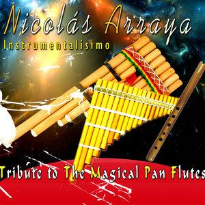 Nicolás Arraya 歌手頭像