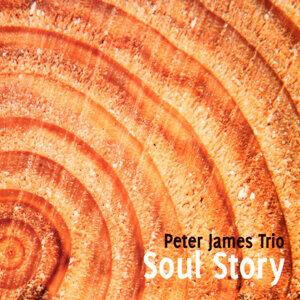Peter James Trio 歌手頭像