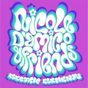 Nicole D'amico and Friends 歌手頭像