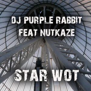 Dj Purple Rabbit feat. Nutkaze 歌手頭像