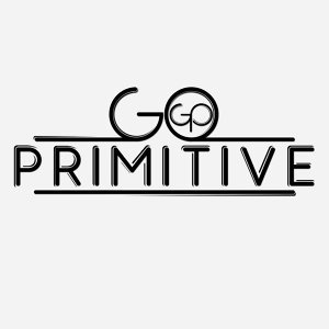 Go Primitive