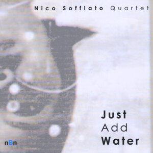 Nico Soffiato Quartet 歌手頭像