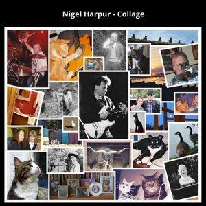 Nigel Harpur 歌手頭像