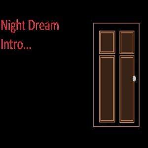 Night Dream 歌手頭像