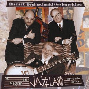 Bienert, Breinschmid & Oesterreicher 歌手頭像
