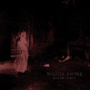 Nights Amore 歌手頭像