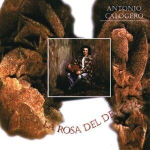 Antonio Calogero 歌手頭像