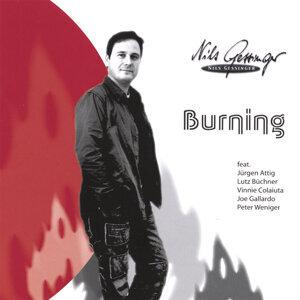 Nils Gessinger 歌手頭像