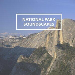World of Natural Sound 歌手頭像