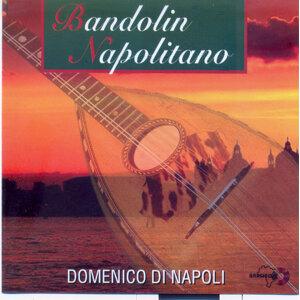 Domenico Di Napoli 歌手頭像