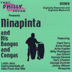 Ninapinta 歌手頭像