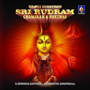 Swaminatha Ganapadigal, G. Srinivasa Sastrigal 歌手頭像