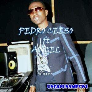 Pedro Celso 歌手頭像