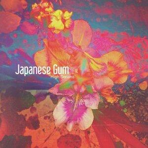 Japanese Gum 歌手頭像