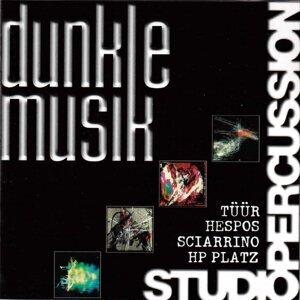 Studio Percussion 歌手頭像