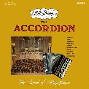 101 Strings Orchestra & Accordion 歌手頭像