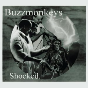 The Buzzmonkeys 歌手頭像