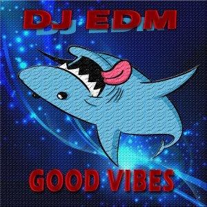 DJ Edm 歌手頭像