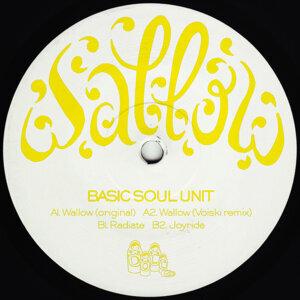 Basic Soul Unit