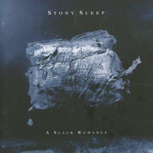 Stony Sleep 歌手頭像