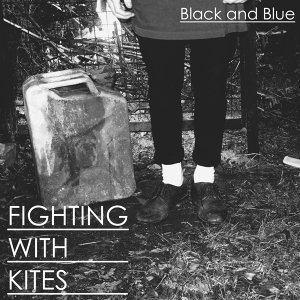 Fighting With Kites 歌手頭像