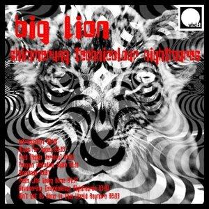 Big Lion 歌手頭像