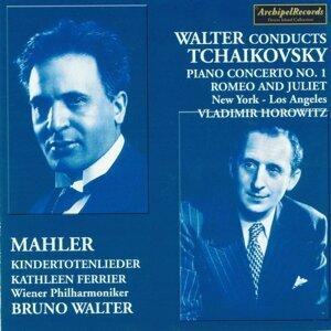 New York Philharmonic Orchestra, Vladimir Horowitz 歌手頭像