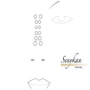 Senykan 歌手頭像