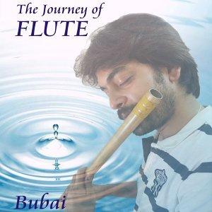 Bubai Nandi 歌手頭像