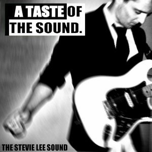 The Stevie Lee Sound 歌手頭像