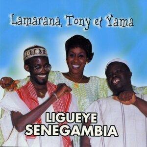 Lamarana, Tony, Yama 歌手頭像