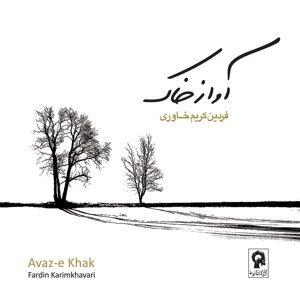 Fardin Karimkhavari 歌手頭像