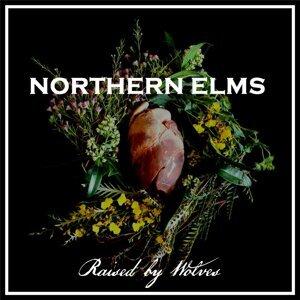 Northern Elms 歌手頭像