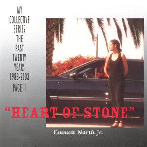 Emmett North Jr. 歌手頭像