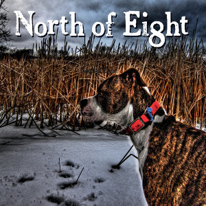 North of Eight 歌手頭像