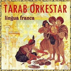 Tarab Orkestar 歌手頭像
