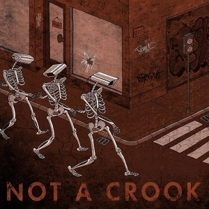 Not a Crook 歌手頭像