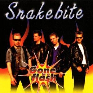 Snakebite 歌手頭像