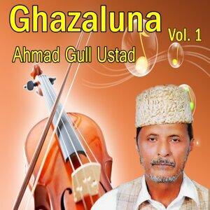 Ahmad Gull Ustad 歌手頭像