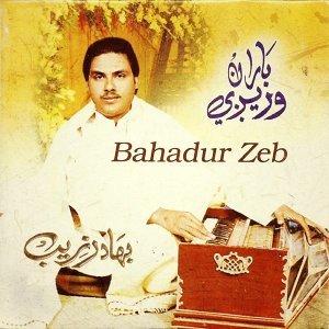 Bahadur Zeb 歌手頭像