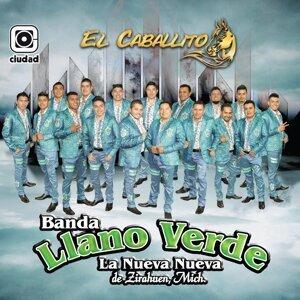 Banda Llano Verde, La Nueva Nueva de Zirahuen, Mich. 歌手頭像