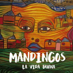 Mandingos 歌手頭像