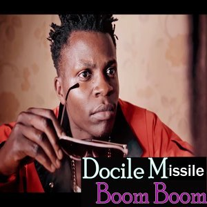 Docile Missile 歌手頭像
