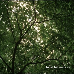 Lucid Fall