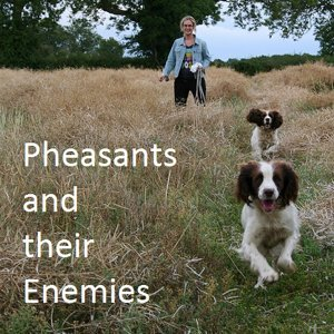 Pheasants and Their Enemies 歌手頭像